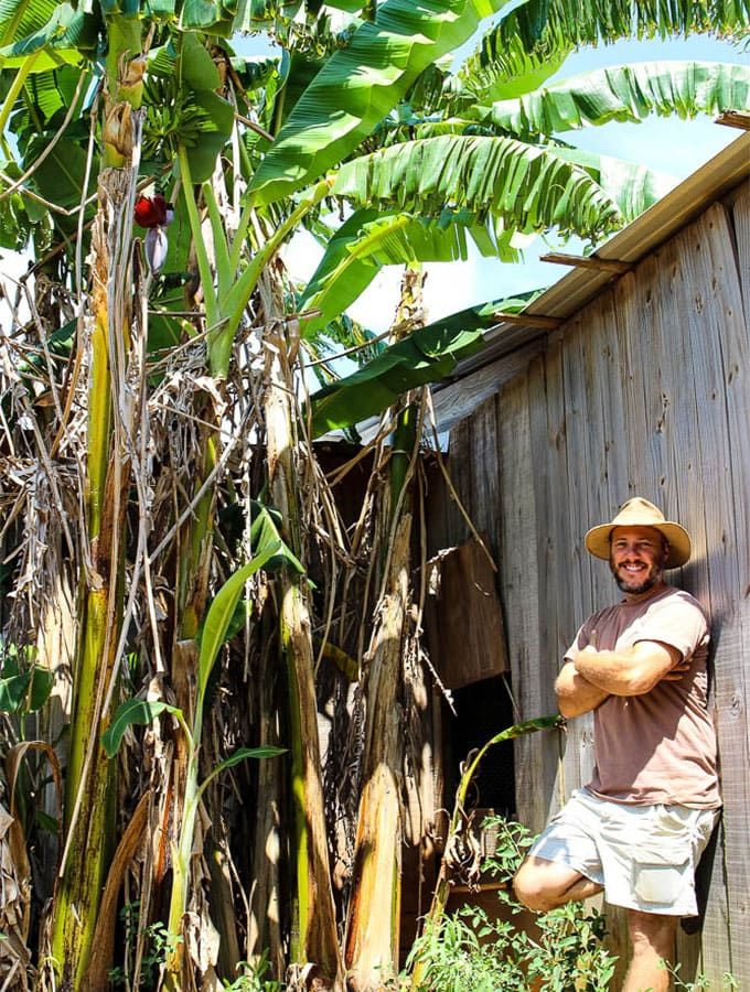 Stewart Perkins with Nature Nine Farmsposing against banana trees.