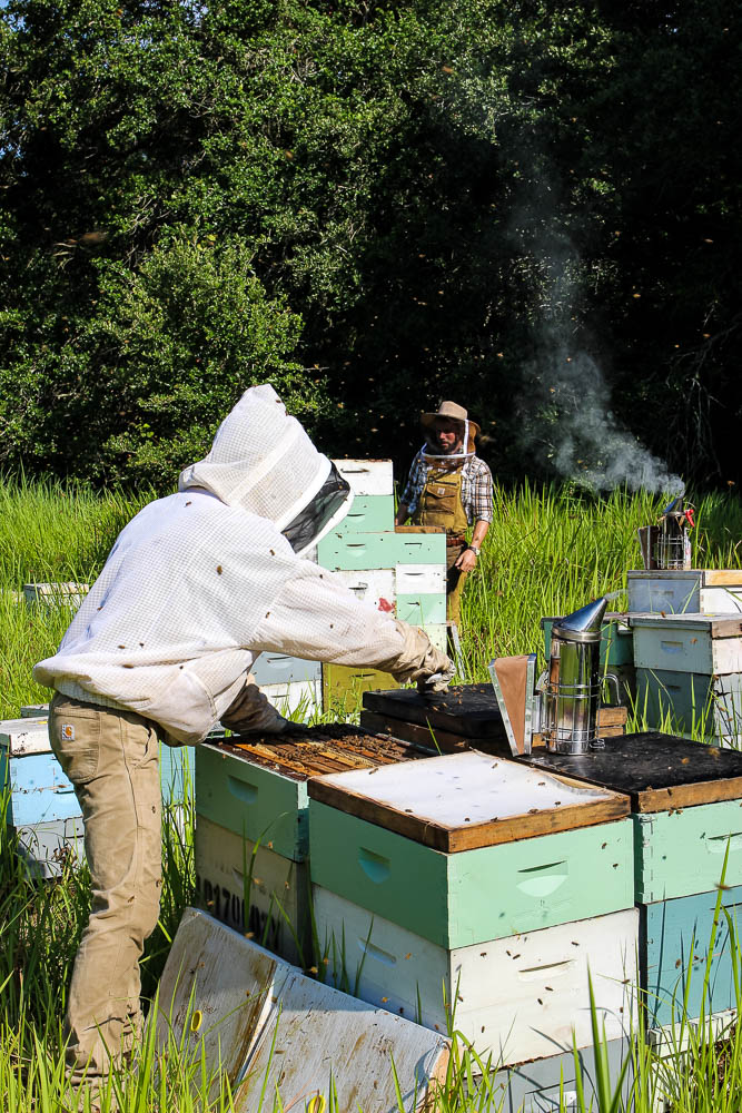 east Hill Honey and fellow bee keeper