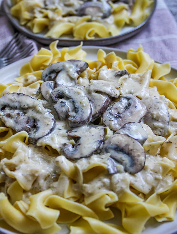 Vegetarian mushroom stroganoff is an easily made in 30 minutes and is plated over a bed of egg noodles.