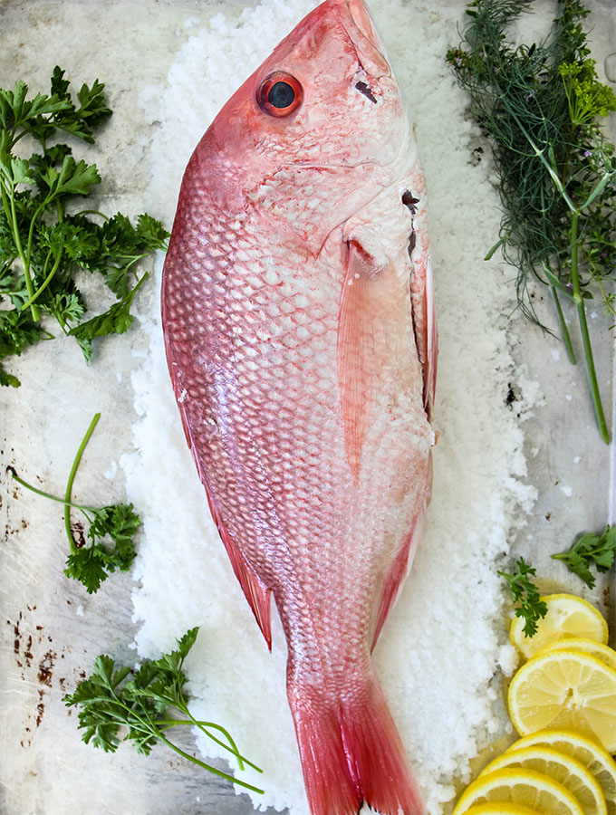 A red fish is stuffed with lemons and fresh herbs to make Salt Crusted Fish.