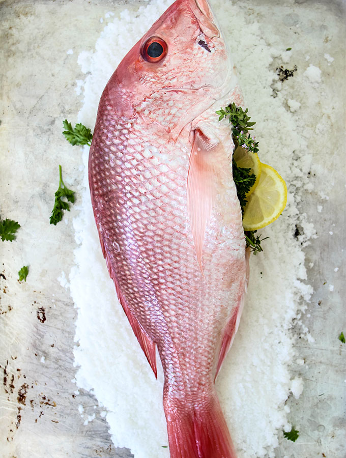 Herbs and lemon wedges are stuffed in a red fish, then the fish is placed on the salt.