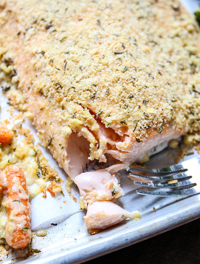 The salmon is flaked with a fork to show the tender texture.
